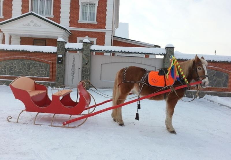 Как самому сделать сани для лошади