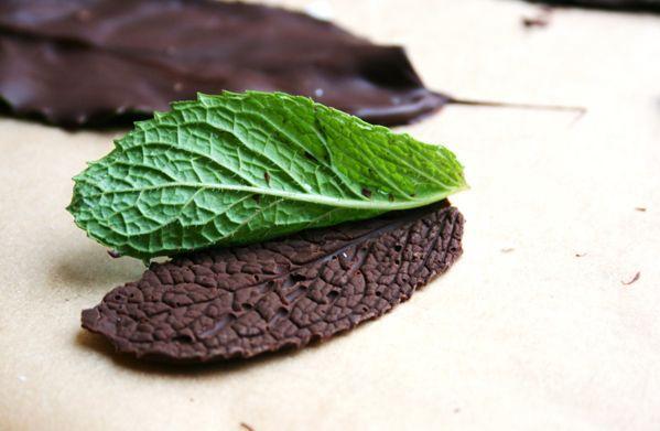 Листочки из шоколада