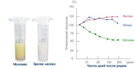 состав молока график