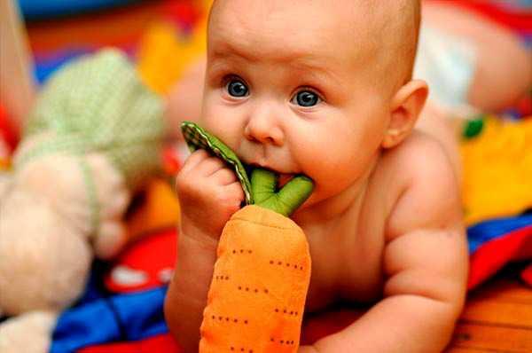 грудничок с морковкой