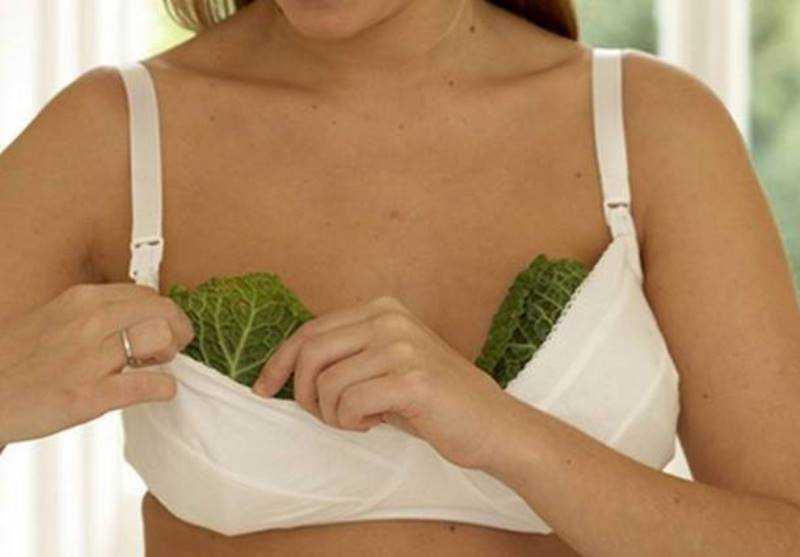 капустный лист лактостаз